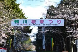 加東市 鴨川桜まつり
